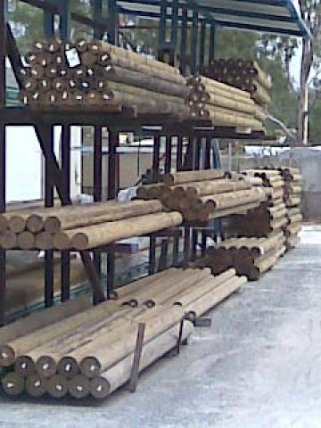 Treated Pine Logs